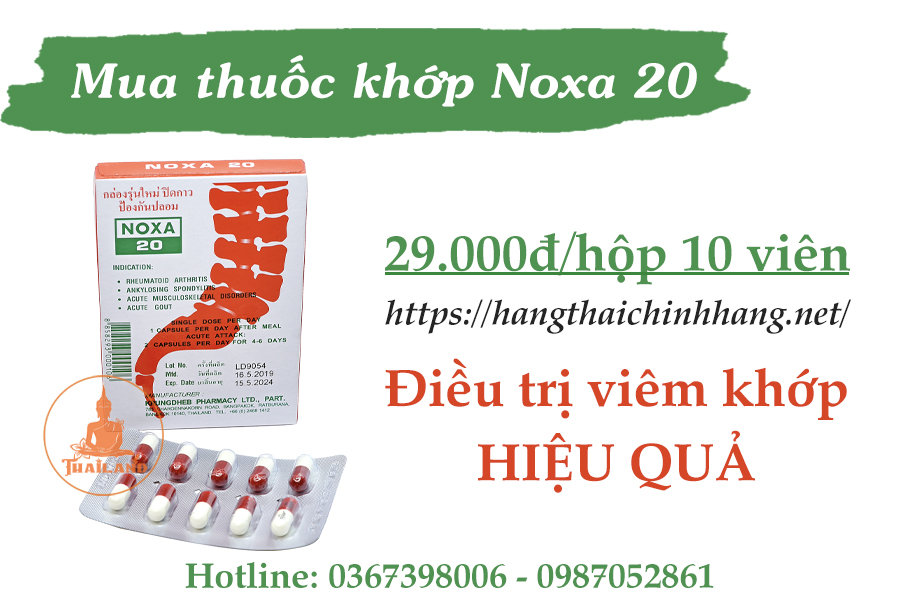 Thuốc khớp Noxa 20 mua ở đâu, giá bao nhiêu?