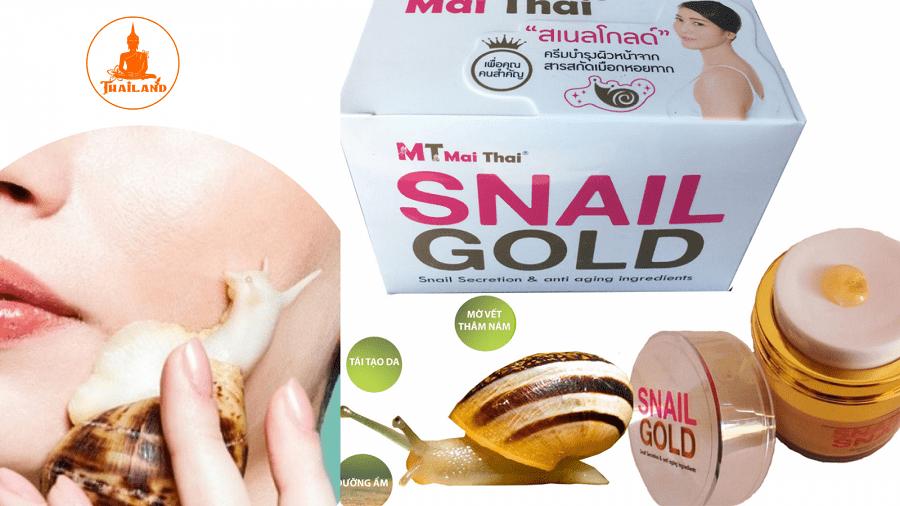 Kêm ốc sên snail gold