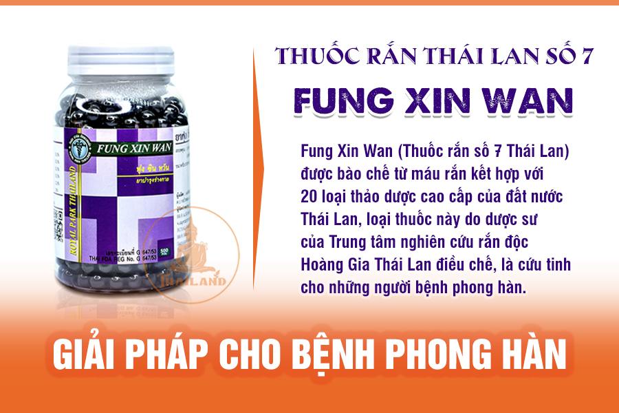 Thuốc rắn Fung Xin Wan điều trị bênh phong hàn